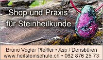 Heilsteinschule Schweiz