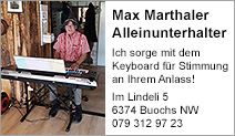 Max Marthaler Alleinunterhalter